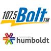 boldt-fm-logo